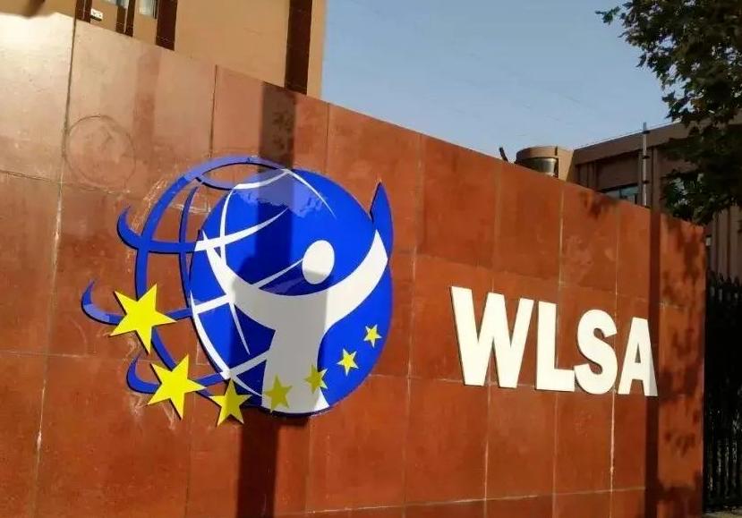WLSA学校