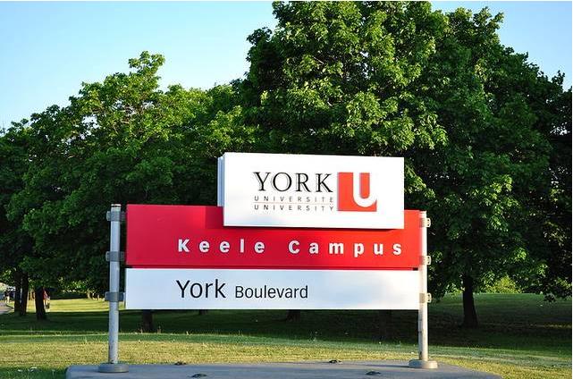 海外大学和专业选择避坑指南,一字之差千里之别!